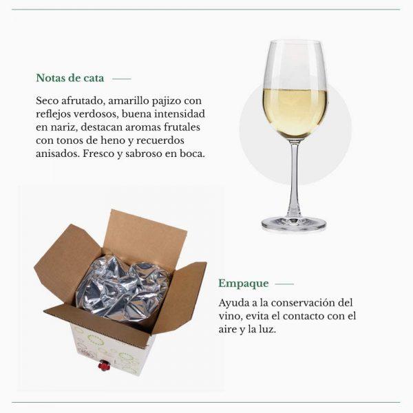 Bag in Box verdejo 15 Litros Vino Blanco Verdejo seco afrutado con aromas frutales Paz VI